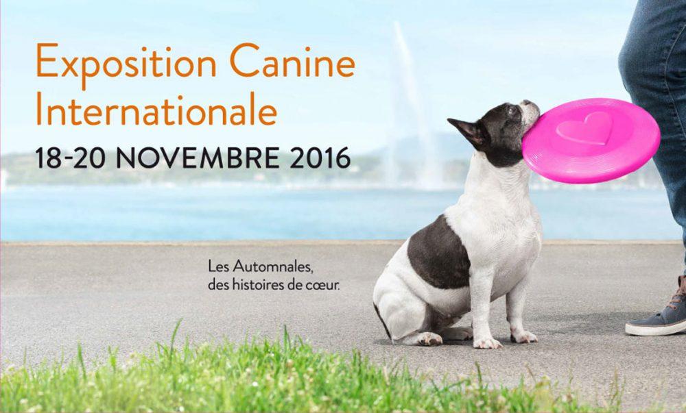 Exposition canine 2016 Genève