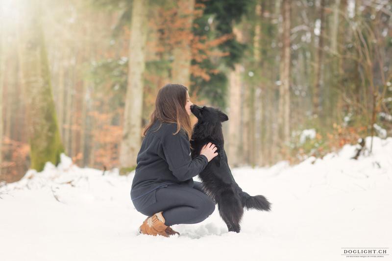 Berger des Pyrénées séance photo dans la neige
