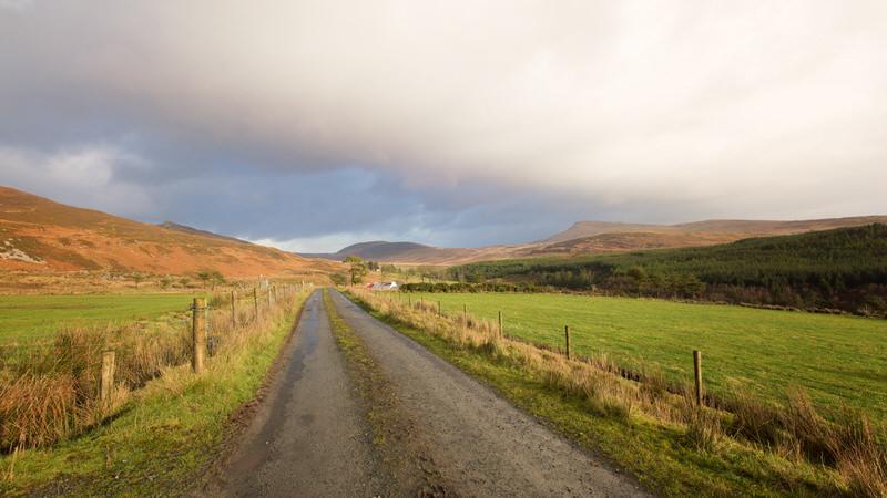 Voyage chien Irlande