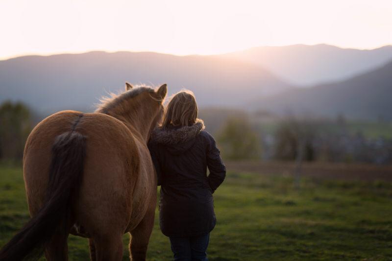 Complicité femme cheval coucher soleil