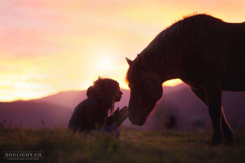 Complicité cheval photographe équin - Annecy