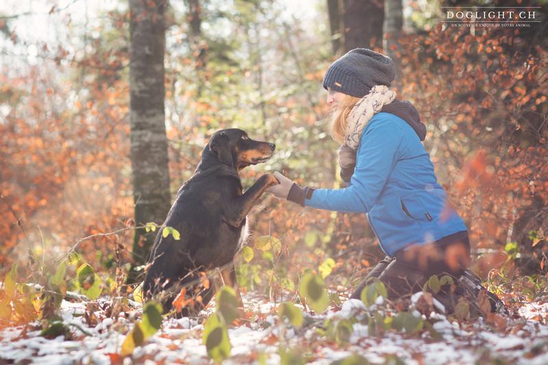 Complicité avec chien de chasse en hiver