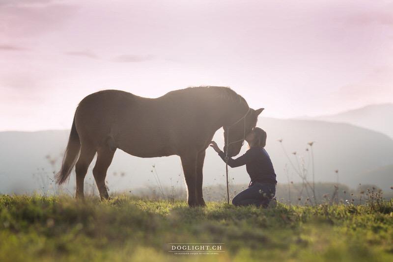 Photographe équestre - Complicité avec un cheval
