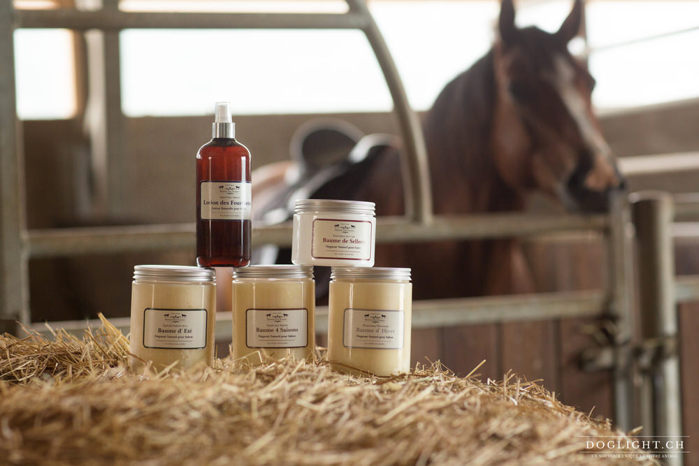 Photographe produits pour chevaux