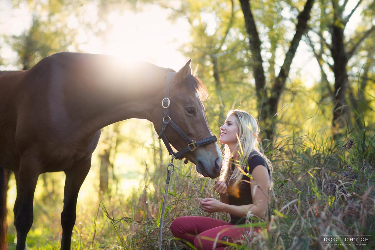 Complicité avec un cheval franche montagne