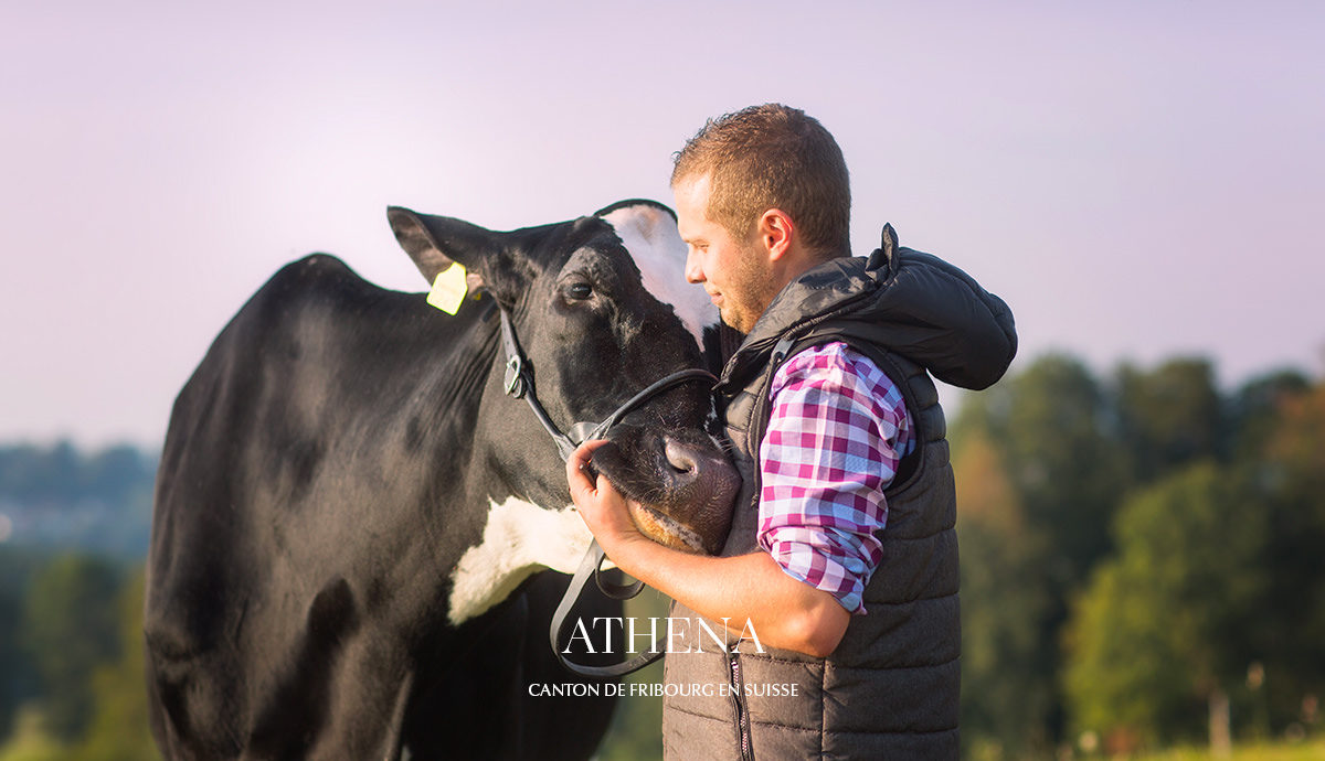 Shooting vache agriculteur fribourg