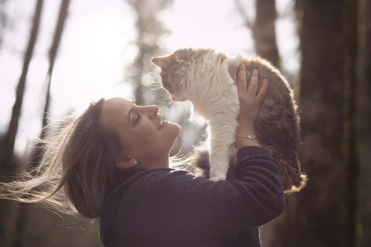 Complicité avec un chat