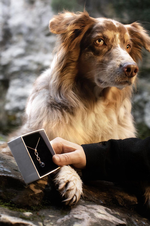 Collier avec poil de chien