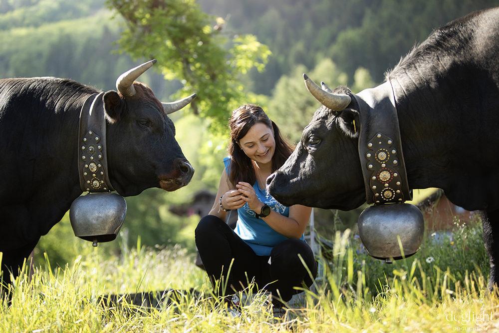 2 vaches d'Herens soeurs