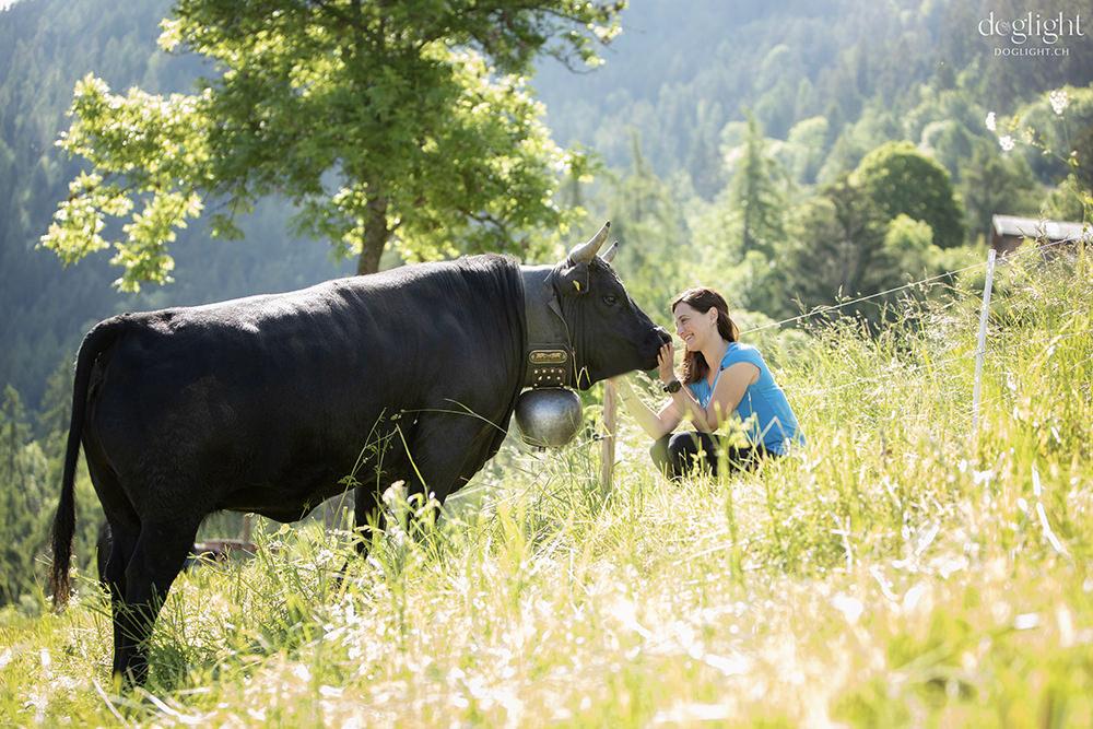 Vache d'Herens